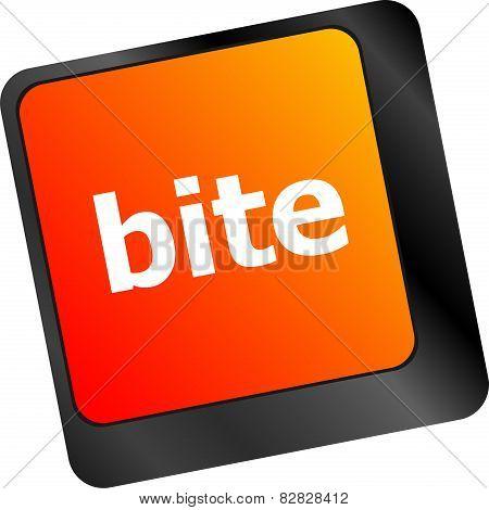 Bite Enter Button On Computer Pc Keyboard Key