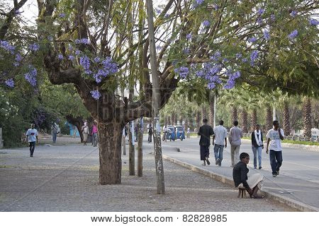 City Street Awassa