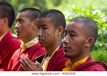 A Row Of Buddhist Monks Praying