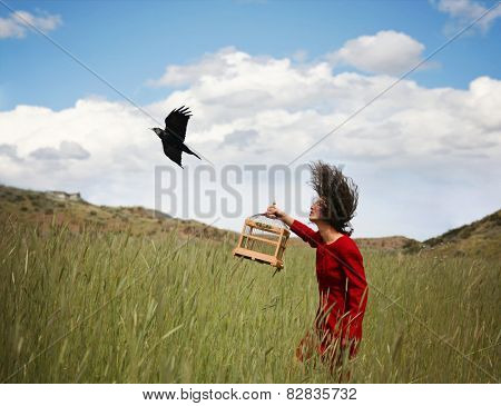 a girl walking in a wheat field on a warm summer day with a black bird