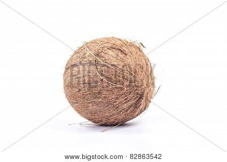 whole exotic fruit - ripe coconut, isolated on white background