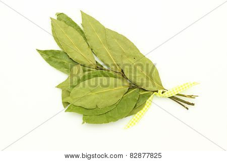 Bay Leaf On White
