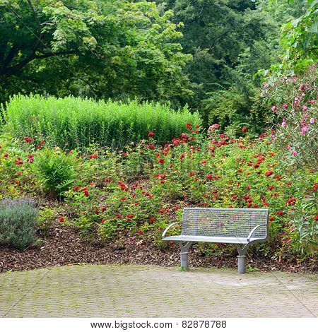 bench in a beautiful park