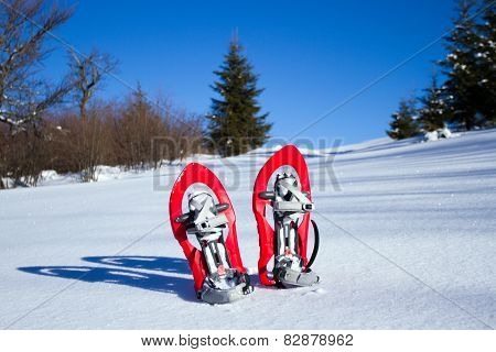 Snowshoeing. Snowshoes in the snow.