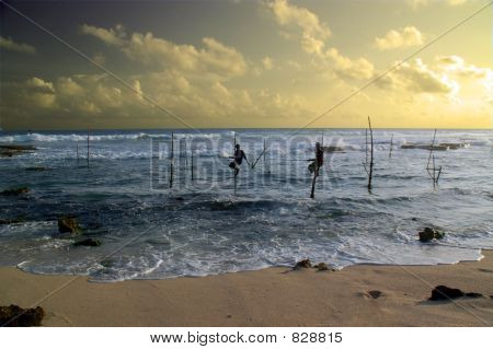 Stilt fishermen, Sri Lanka 1
