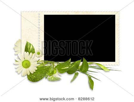 Isolated Delicate Frame For Three Photos With Flowers