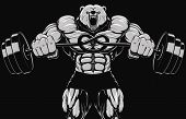 picture of barbell  - Vector illustration of an angry bear with a barbell in black and white - JPG