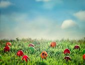 stock photo of green-blue  - Easter eggs in spring grass - JPG