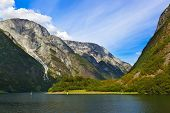 stock photo of fjord  - Fjord Sognefjord in Norway  - JPG