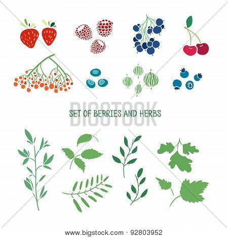 Set of berries, herbs and plants. Simple colors. Cherries, blueberries, strawberries, gooseberries,