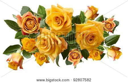 Beautiful  Bouquet Of Yellowish Orange Roses Isolated On White Background