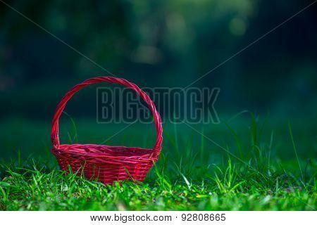 Red Basket on Green Grass Field