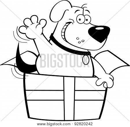Cartoon dog inside a gift box.