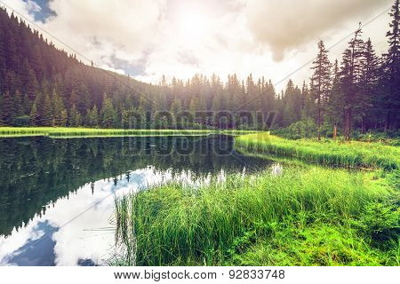 Summer mountain lake Marichejka and fir forest reflection (Ukraine, Chornogora Ridge, Carpathian Mountains)