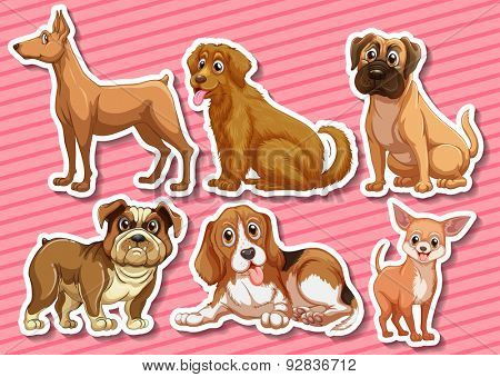 Stickers of different species of dogs on pink background