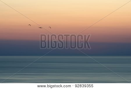 Three bars flying in colourful sunset