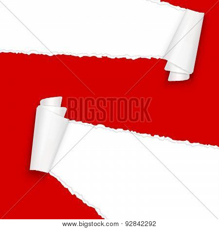 Ripped Open Paper Red