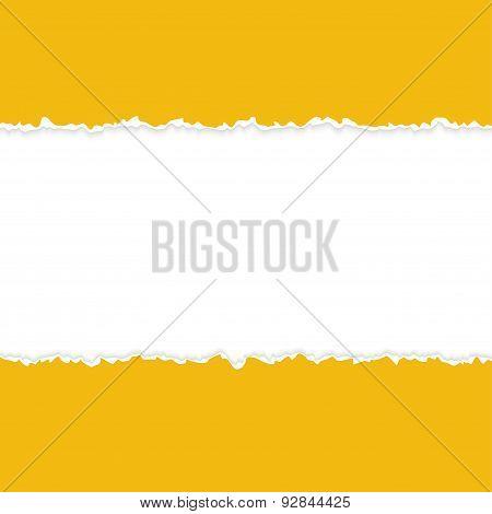 Ripped Open Paper Orange