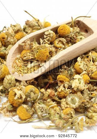 Heap Of Dried Chamomile On Wooden Spoon