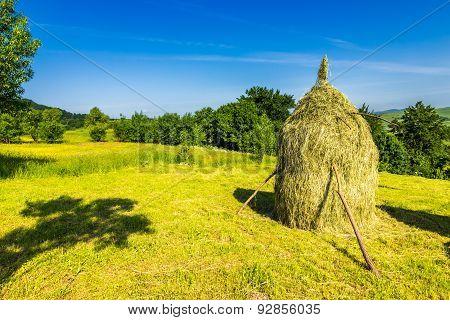 Field With Haystacks