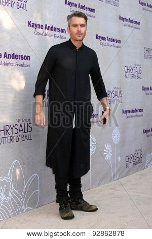 LOS ANGELES - JUN 6:  Balthazar Getty at the 14th Annual Chrysalis Butterfly Ball at the Private Residence on June 6, 2015 in Los Angeles, CA