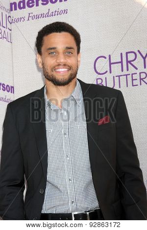 LOS ANGELES - JUN 6:  Michael Ealy at the 14th Annual Chrysalis Butterfly Ball at the Private Residence on June 6, 2015 in Los Angeles, CA