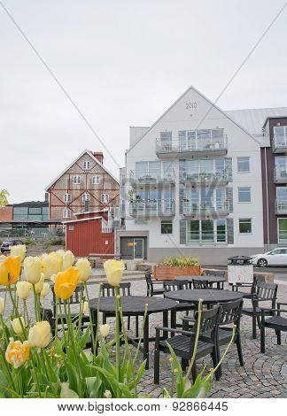 Residential modern building with tulips