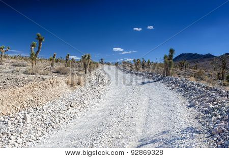 Stony Empty Road In Death Valley National Park In California, United States