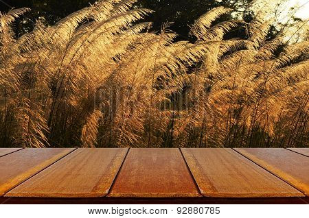 Outdoor Picnic Background With Wooden Table.