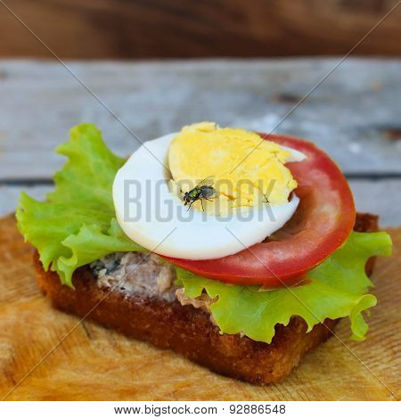 A fly sits on the sandwich.