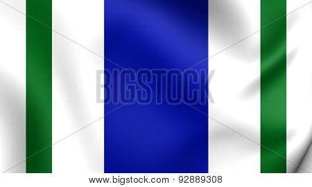 Flag Of The Vega Alta, Puerto Rico.