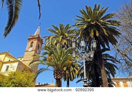 Church and palm trees, Campillos.