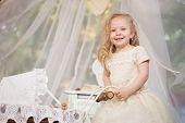 image of faerie  - Outdoor portrait of cute little girl in princess dress - JPG