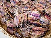 foto of squid  - Dried squid in traditional thai food  - JPG