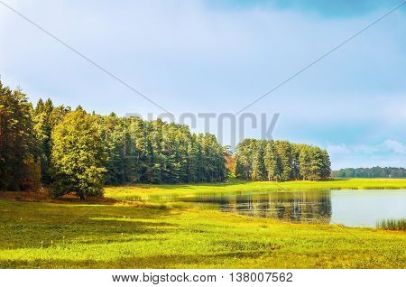 Autumn sunny view of autumn forest near the Soroti river and autumn yellowed forest trees -autumn natural landscape of autumn forest nature lit by bright autumn sunlight. Soft focus applied