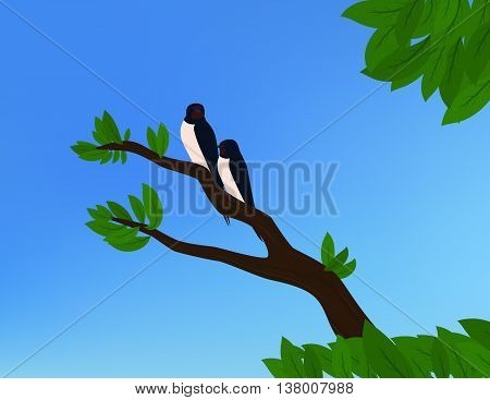 Two barn swallows sitting on a branch with green leaves and blue sky in background.