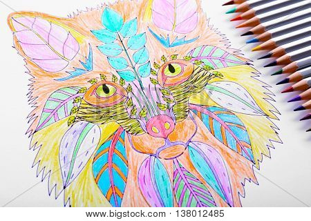 Adult anti stress coloring with crayons closeup