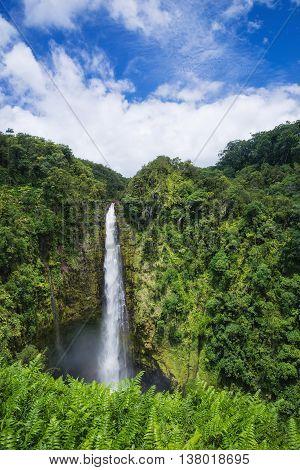 Akaka Falls state park on Big Island Hawaii