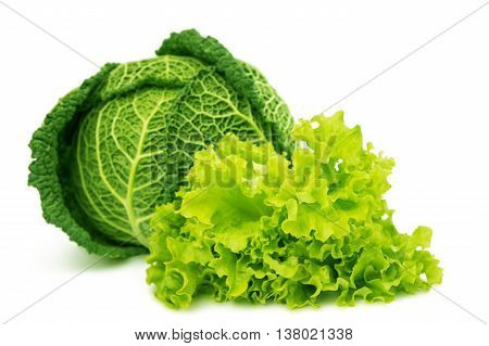 Savoy cabbage green, isolated on white background