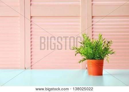 Green plant on pink folding screen background