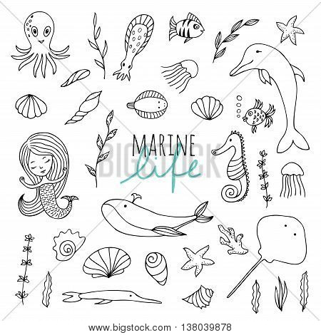 Vector set of marine life. Fish mermaid sea animals hand drawn in Doodle style. Black-and-white image.