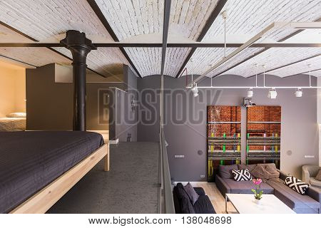 Mezzanine Apartment In Industrial Style