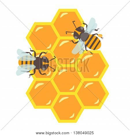 Honeycomb with flowing honey vector illustration. Bee healthy vector orange honeycomb hexagon nature beeswax food. Beehive cell gold pattern honeycomb design shape organic hive bee animal.