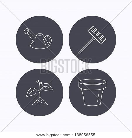 Sprout plant, watering can and pot icons. Rake linear sign. Flat icons in circle buttons on white background. Vector