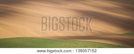Brown cultivated field, color summer ground waves