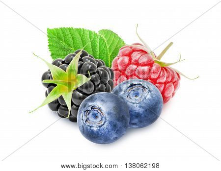 Fresh ripe blackberry, raspberry, blueberry berries with leaf isolated on white background. Design element for product label, catalog print, web use.