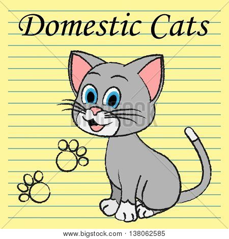 Domestic Cats Shows Family Kitty And Pedigree