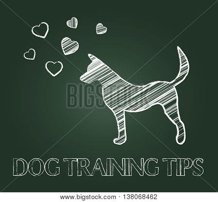 Dog Training Tips Shows Instruction Skills And Coaching