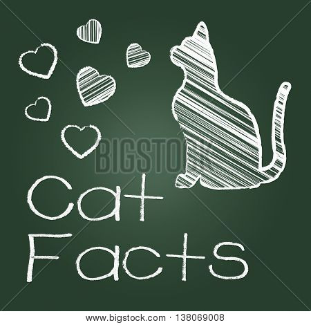 Cat Facts Means Details Info And Pets