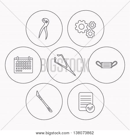 Medical mask, scalpel and dental pliers icons. Eyebrow tweezers linear sign. Check file, calendar and cogwheel icons. Vector